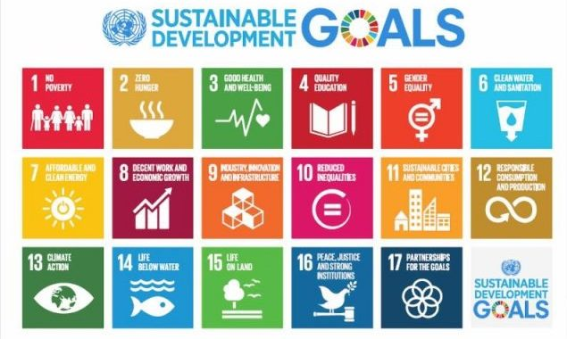Sustainable Dev Goals pic